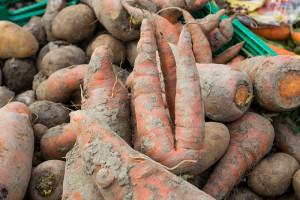25 Tonnen Essen 'gerettet'