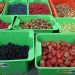 Vom Feld ins Glas - Obst retten und Marmelade kochen
