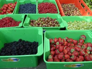 Marmelade für Alle aus gerettetem Obst