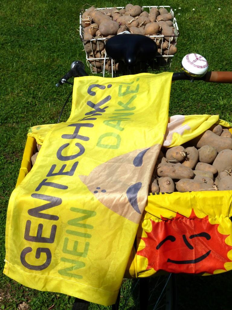 Gentechnik kommt uns nicht auf den Acker. Die neuen Gentech-Pflanzen haben gleich einen ganzen Mix an neuen Eigenschaften. Die Risikoabschätzung wird damit noch schwieriger.BERLIN taz | Das Zukunftsszenario, das Gentechnikkritiker Christoph Then beschreibt, klingt nicht gut. Zwar habe sich die Gentech-Industrie mit ihren im Labor kreierten Pflanzen in der Europäischen Union (EU) bisher nicht durchsetzen können – bis auf wenige Ausnahmen werden die Gentech-Pflanzen hierzulande nicht angebaut. Als Futter- oder Leb
