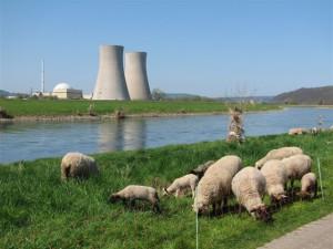 AKW Grohnde –  Amtsgericht will Verfahren einstellen
