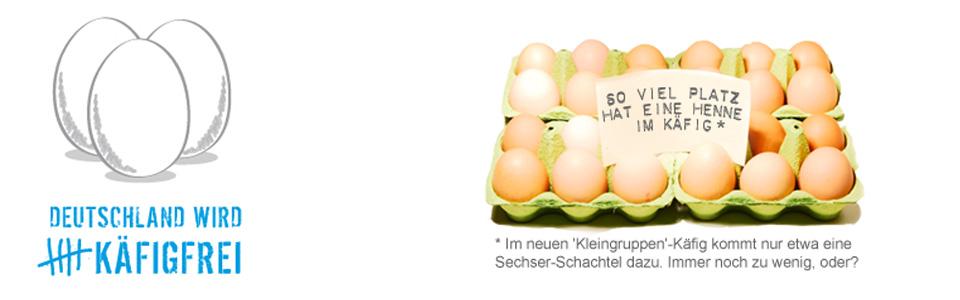 Initiative Käfigfrei - Unter dem Motto »Deutschland wird käfigfrei« führen wir mit Unternehmen aus der Lebensmittelwirtschaft Gespräche und Verhandlungen zum Ausstieg aus der Verwendung von Käfigeiern. 14 Tierschutz- und Tierrechtsorganisationen unterstützen diese Kampagne mit ihrem Namen und beteiligen sich bei Bedarf an Protesten.