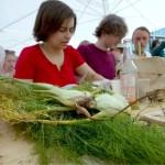 Pro Jahr gingen in Deutschland mehr als 18 Millionen Tonnen Lebensmittel verloren, teilten WWF und Welthungerhilfe mit. Das entspreche fast einem Drittel des Nahrungsmittelverbrauchs in Deutschland. Heute werden mehr als 1000 kg gerettet, geschnippelt, gekocht und verkostet